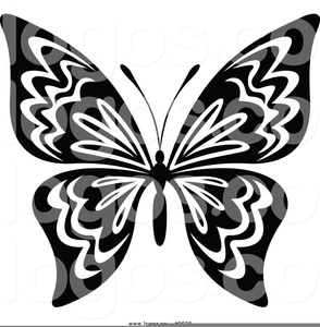 Black White Butterfly Clipart.