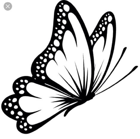 Black And White Butterfly Drawing at GetDrawings.com.