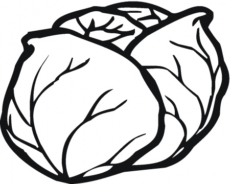 Free Cabbage Clipart Black And White, Download Free Clip Art.