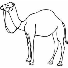 Camel clipart black and white 1 » Clipart Station.