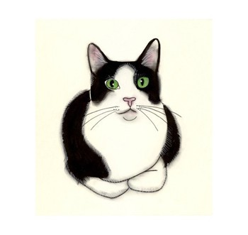 Jpeg Images Black And White Clipart Cat Eyes Clipground
