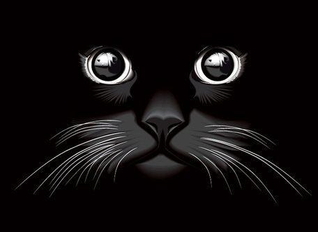 Black Cat Eyes Vector Background (Free), Vector File.
