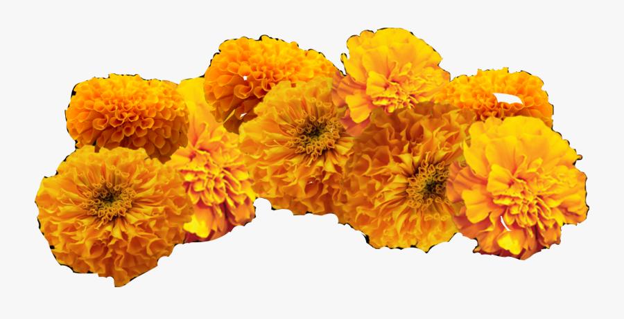 Clip Art Cempasuchil Flowers.