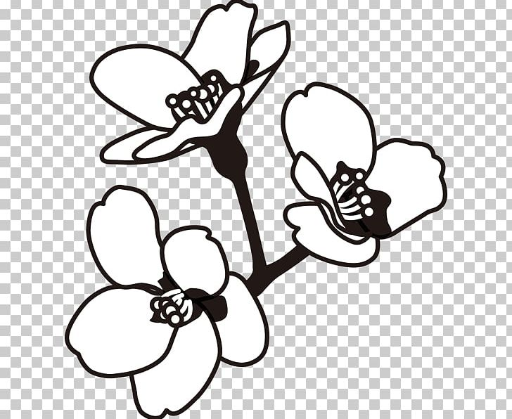 Black And White Monochrome Painting Line Art PNG, Clipart, Black.