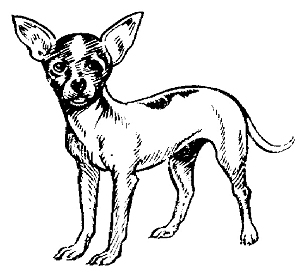 Free Black Chihuahua Cliparts, Download Free Clip Art, Free.