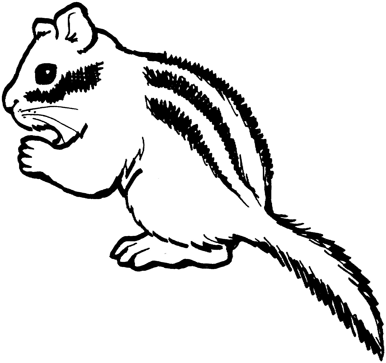 Chipmunk clipart nut, Chipmunk nut Transparent FREE for.