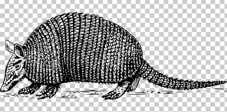Armadillo PNG, Clipart, Animal, Animal Figure, Armadillo.