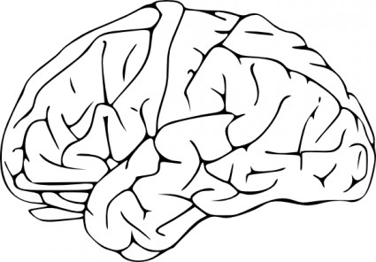 Free Brain Clipart Black And White, Download Free Clip Art.