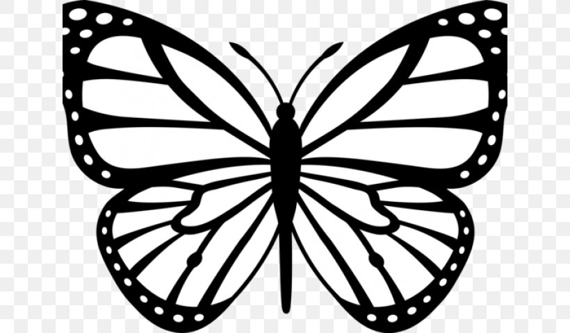 Monarch Butterfly Black And White Drawing Clip Art, PNG.