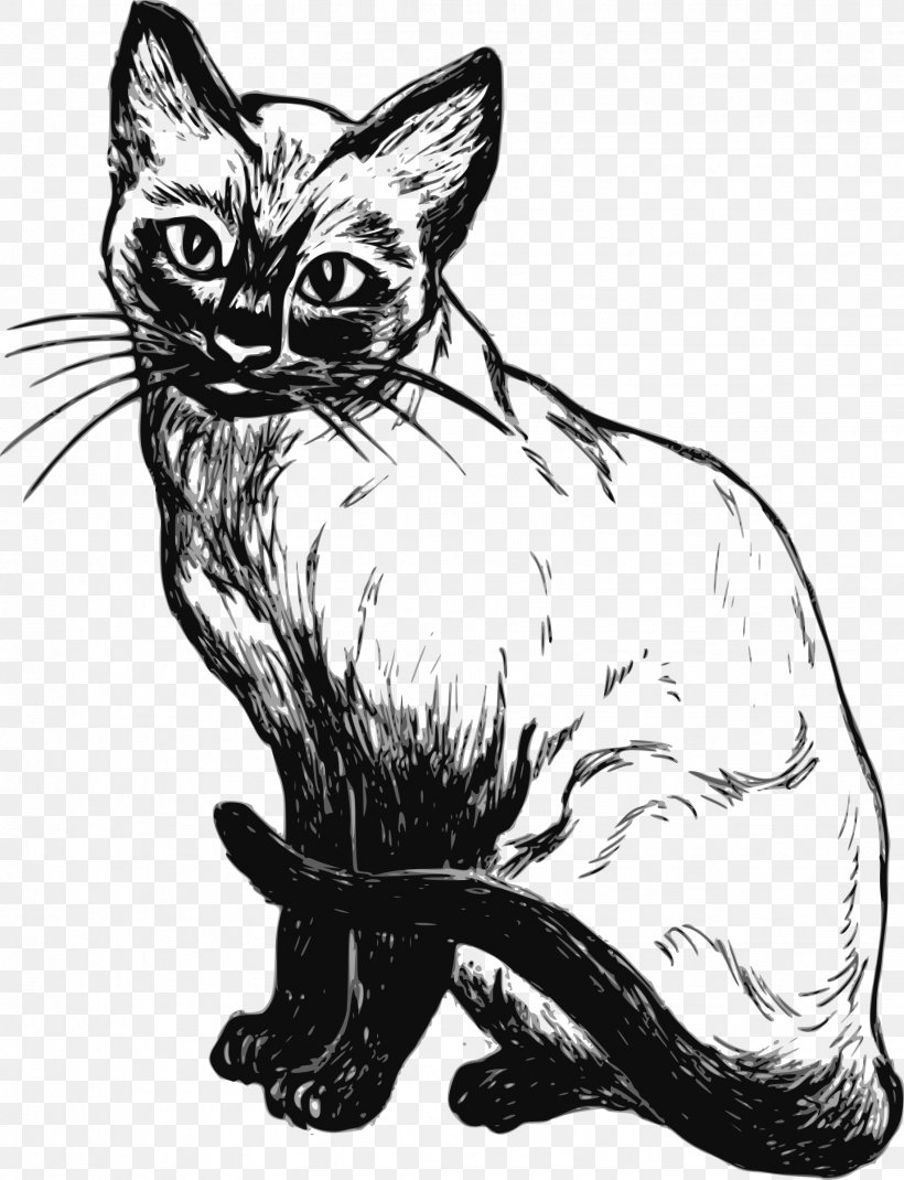 Siamese Cat Kitten Black And White Black Cat Clip Art, PNG.