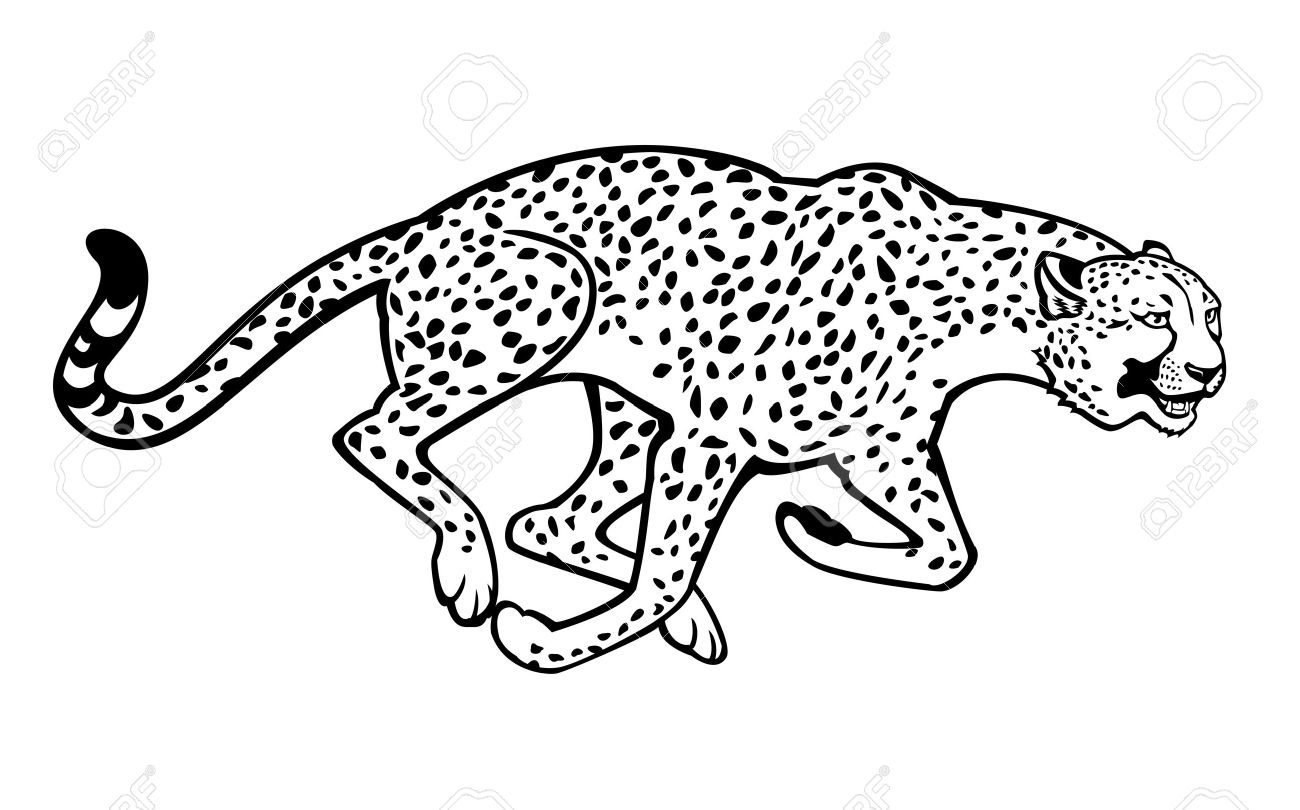 Cheetah Clipart Black And White.