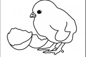 Chick clipart black and white 1 » Clipart Station.