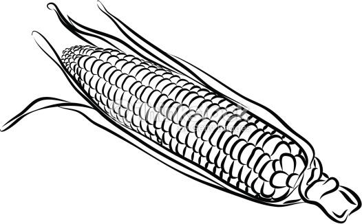 Free Corn Black And White Clipart, Download Free Clip Art.