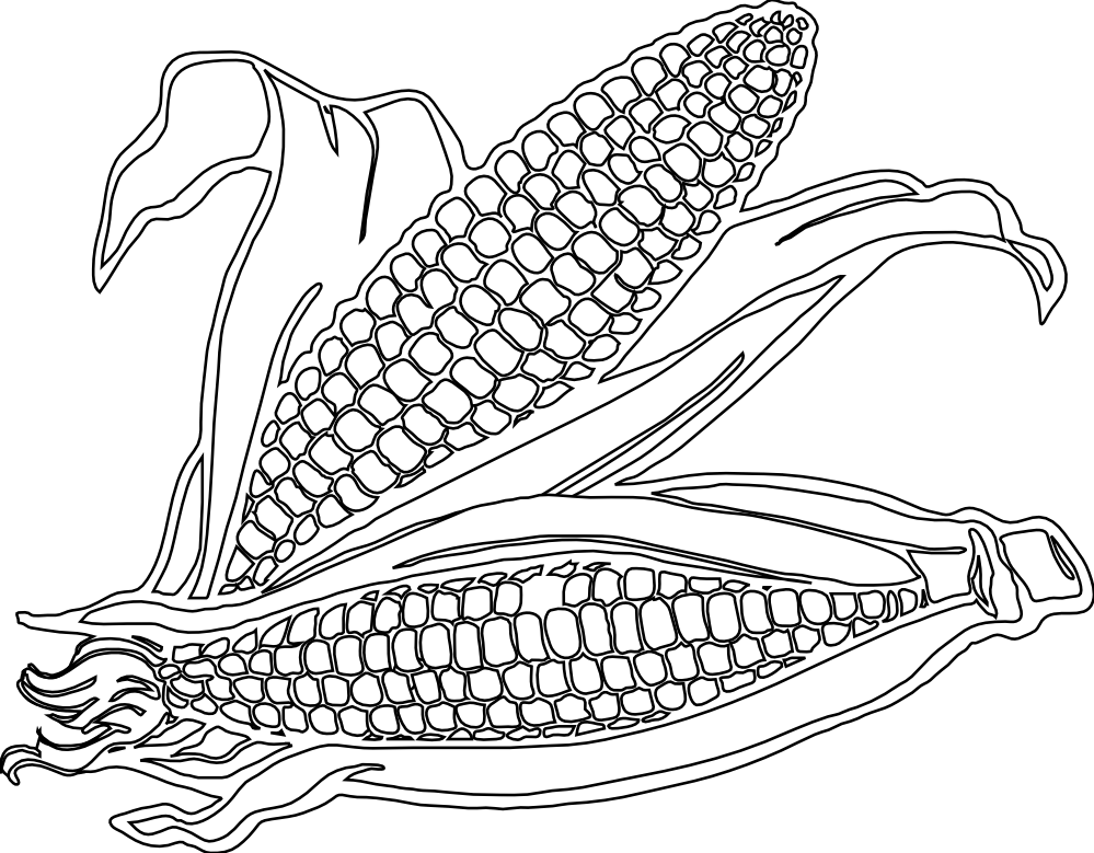 Corn Clipart Colouring Page.