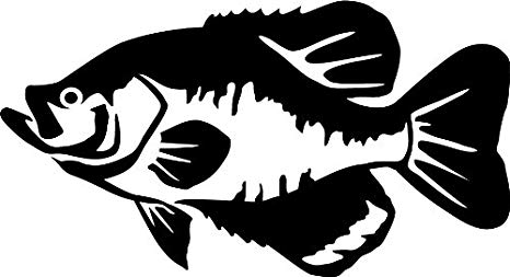Amazon.com: Express Yourself Products Black Crappie Wall.