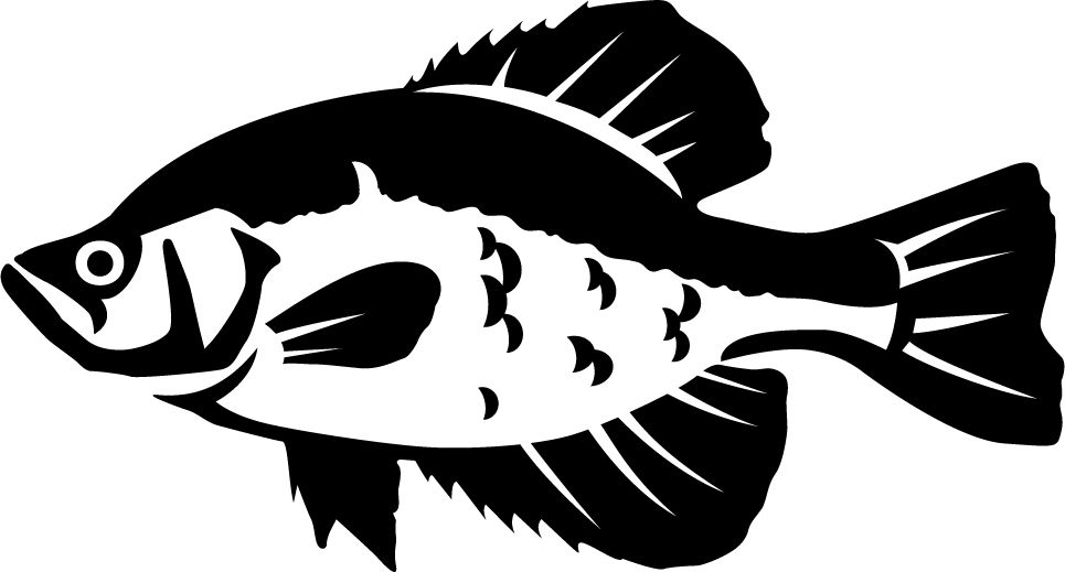 Crappie 2 Wall Decal.
