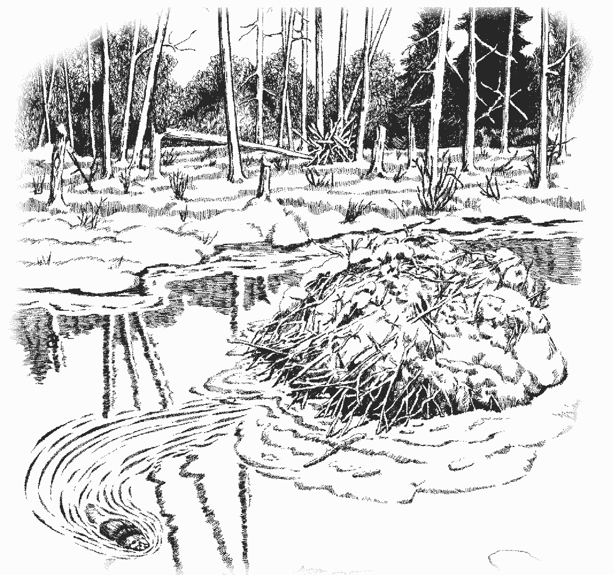 Free Creek Clipart Black And White, Download Free Clip Art.