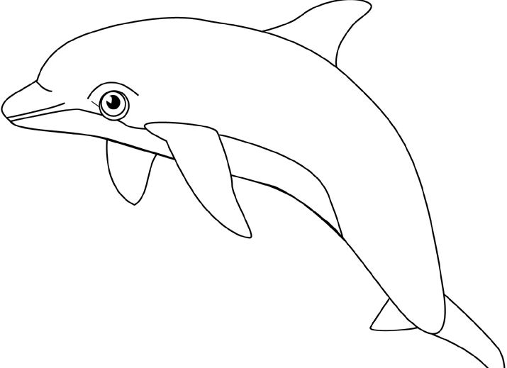 Dolphin Clipart Black And White Png.