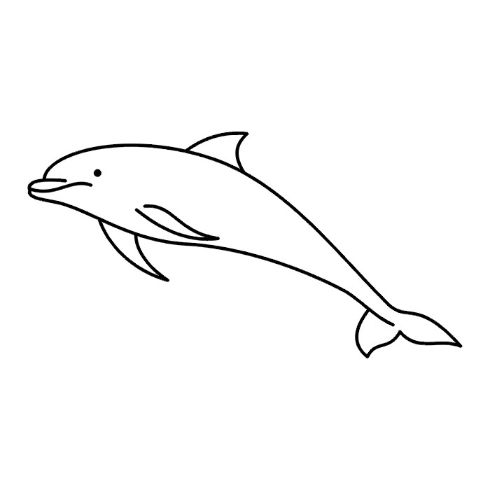 Free Black And White Dolphin Pictures, Download Free Clip.