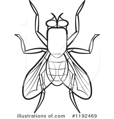 2541 Fly free clipart.