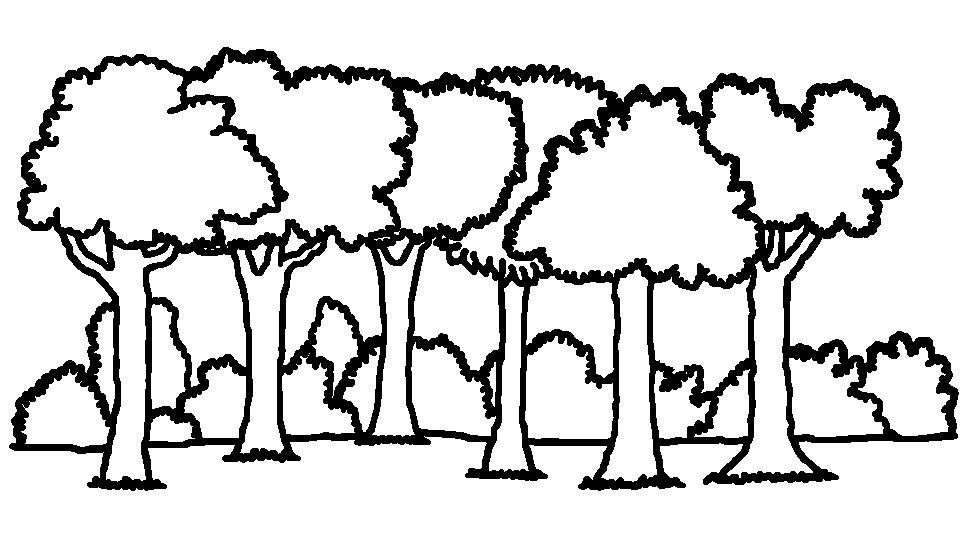 Forest Black And White Clipart.