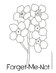 clipart forget me not flowers.