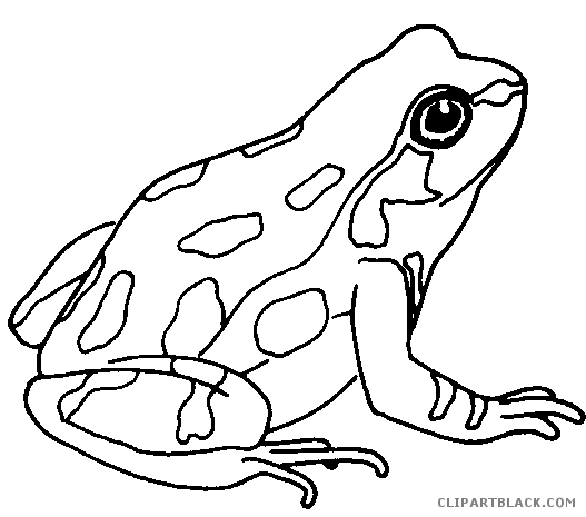 Frog Clipart Black And White Png.