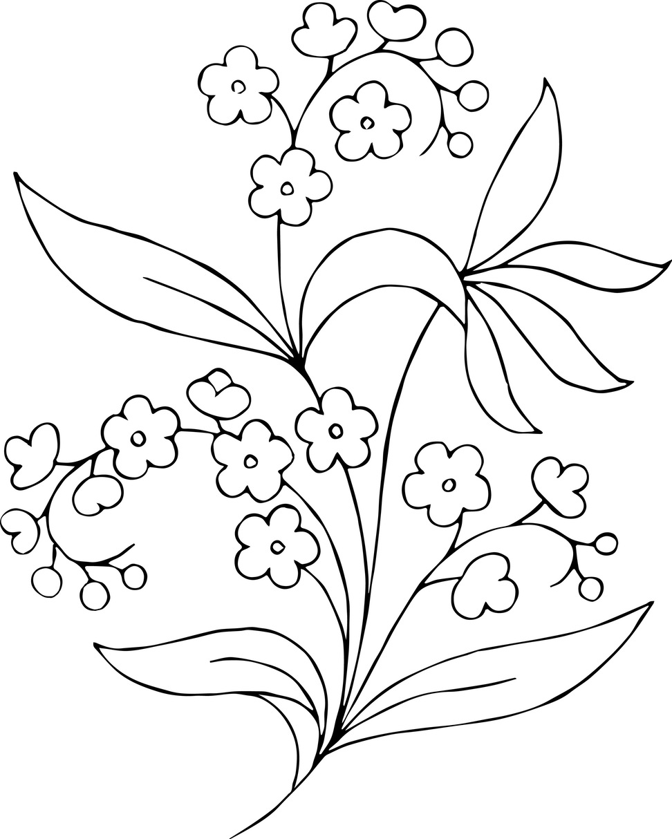 Free Black And White Clipart Garden Flowers Toublanc Info Stock.