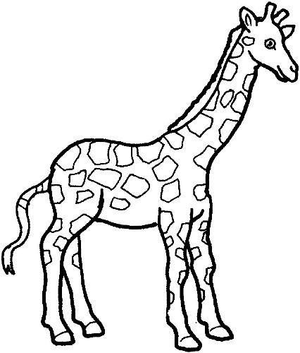 Black and white giraffe clipart.