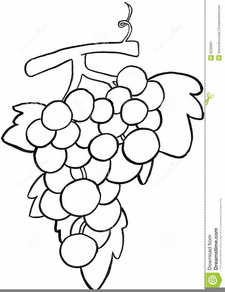 Grape Clipart Black And White.