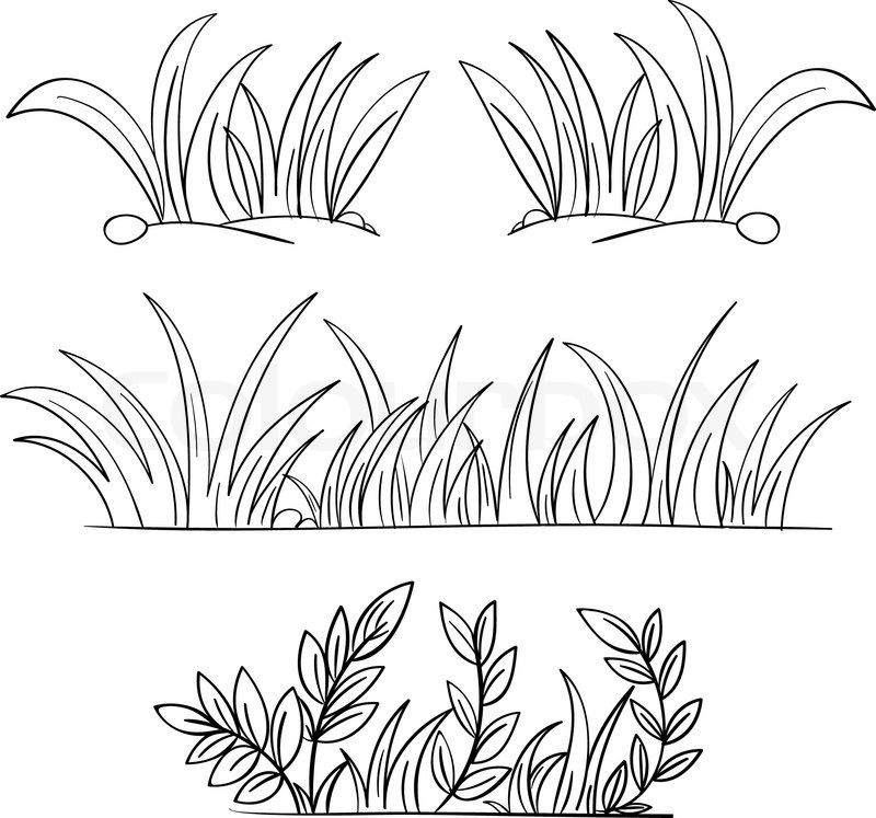 Grass Drawing Black And White Grass vector in 2019.