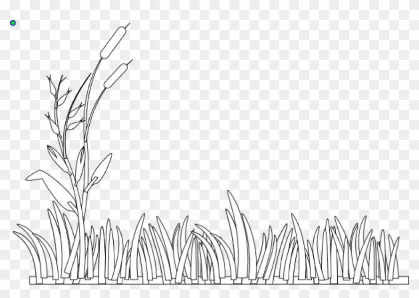 Free Png Download Grass Black And White Png Images.