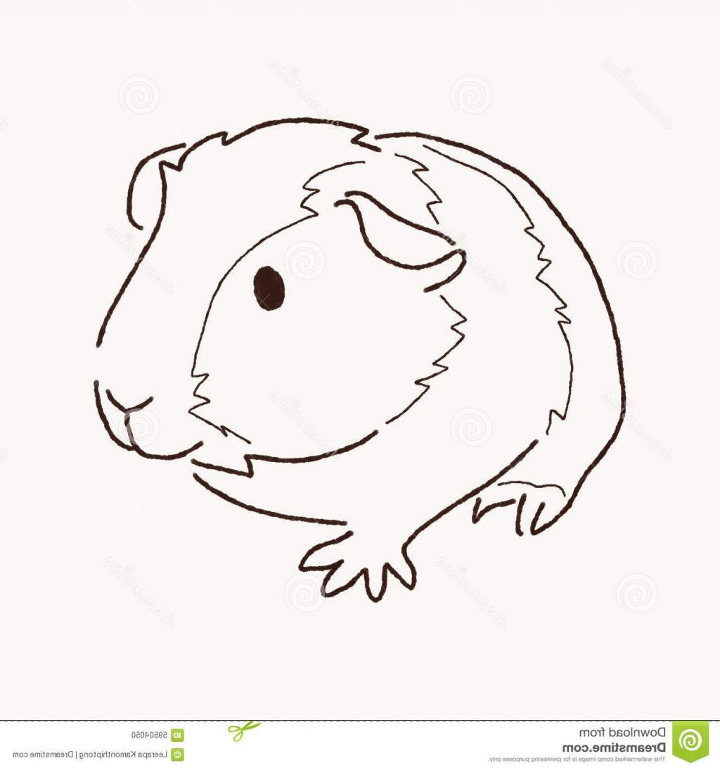 Hamster Clipart Black And White.