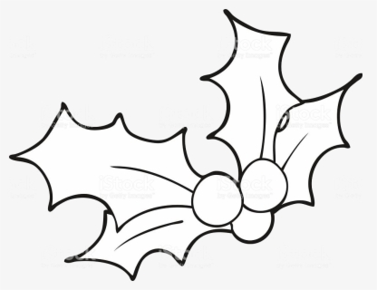 Free Christmas Holly Black And White Clip Art with No.