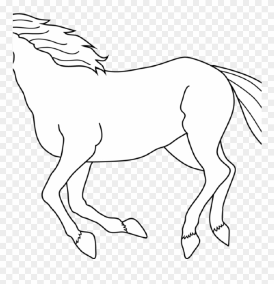 Horse Clipart Black And White Horse Black And White.