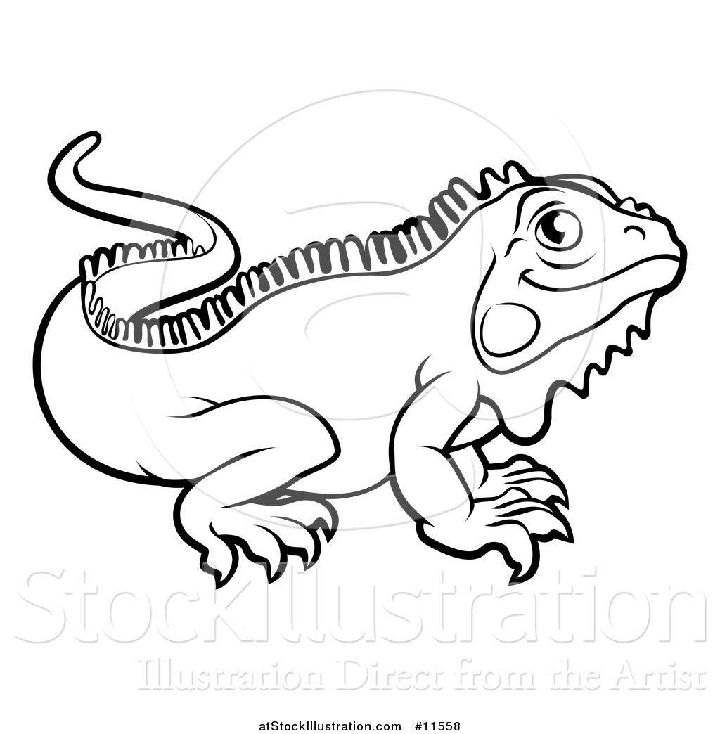 Iguana clipart black and white, Iguana black and white.
