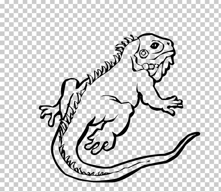Green Iguana Lizard Reptile Ctenosaura Similis PNG, Clipart.