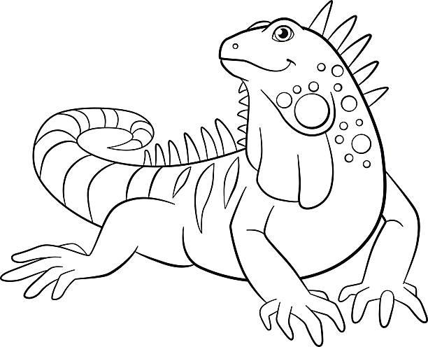 485 Iguana free clipart.