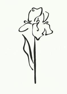 Iris Flower\