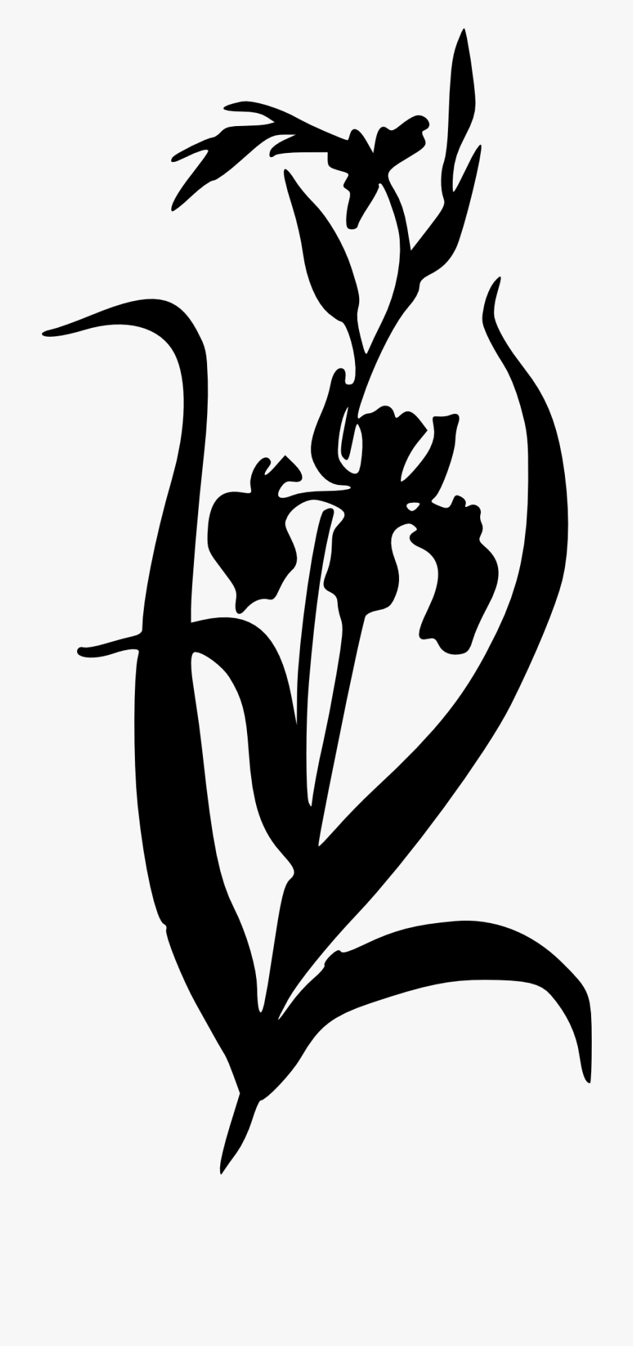 Iris Flower Iris Clipart Black And White , Transparent.
