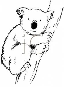 Koala clipart black and white 3 » Clipart Station.