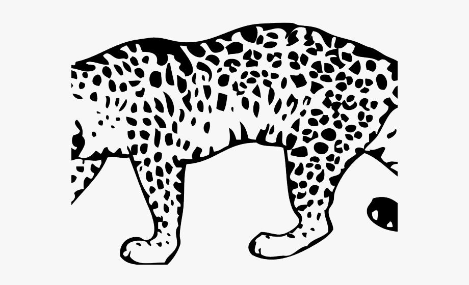 Jaguar Clipart Asia Animal.