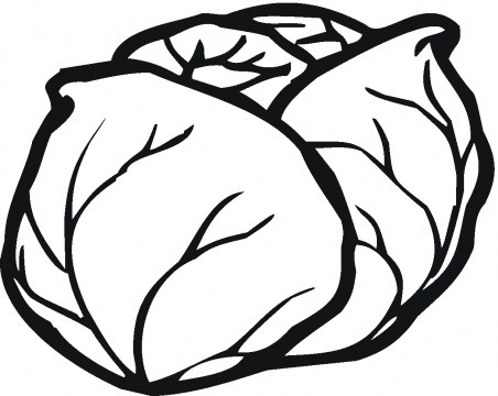 Lettuce Clipart Black And White.