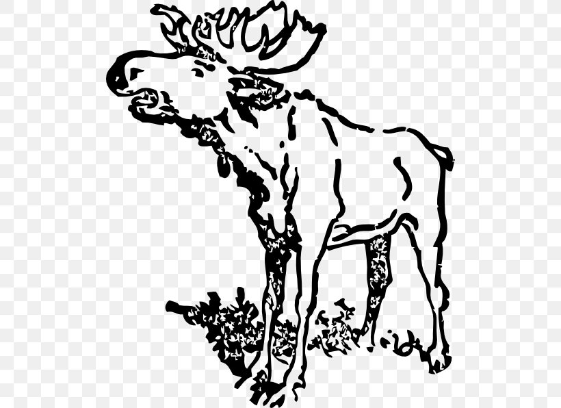 Moose Drawing Black And White Clip Art, PNG, 510x596px.