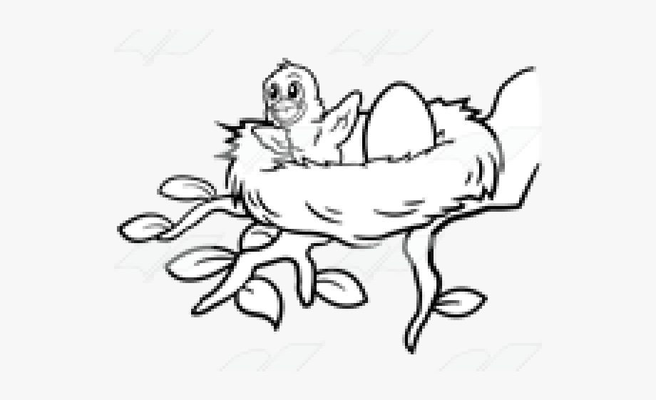 Birds Nest Clipart Mama Bird.