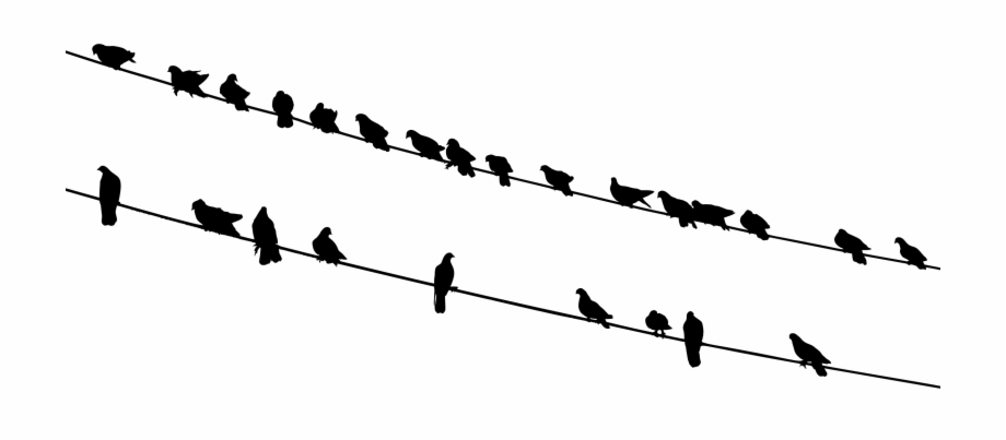 Graphic Library Library Bird Silhouette Flock Black.