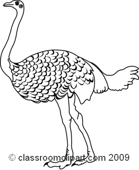 black and white clipart ostrich #10