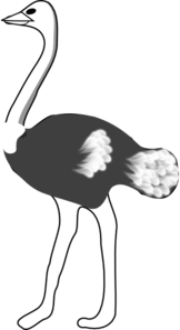Ostrich Clip Art at Clker.com.