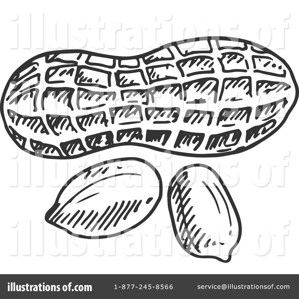 1593 Peanut free clipart.