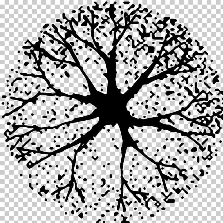 Tree Black and white Woody plant , tree plan PNG clipart.